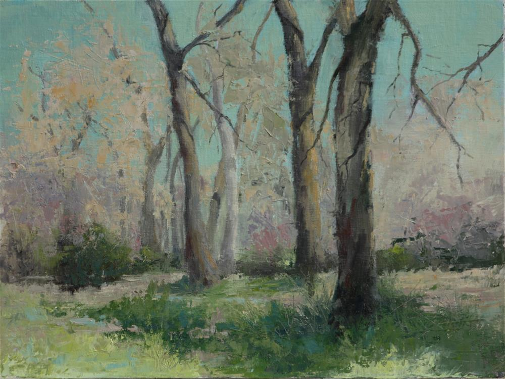 """May Cottonwood Grove"" original fine art by Sheila Marie"