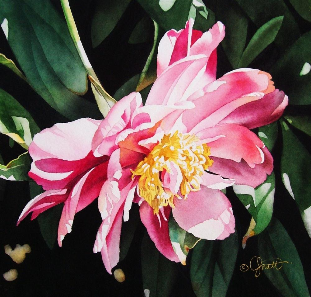 """Cascading Peony"" original fine art by Jacqueline Gnott, whs"