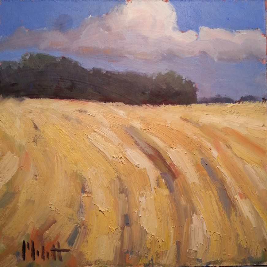 """Waves of Gold Rural Landscape End of Summer Oil Painting"" original fine art by Heidi Malott"