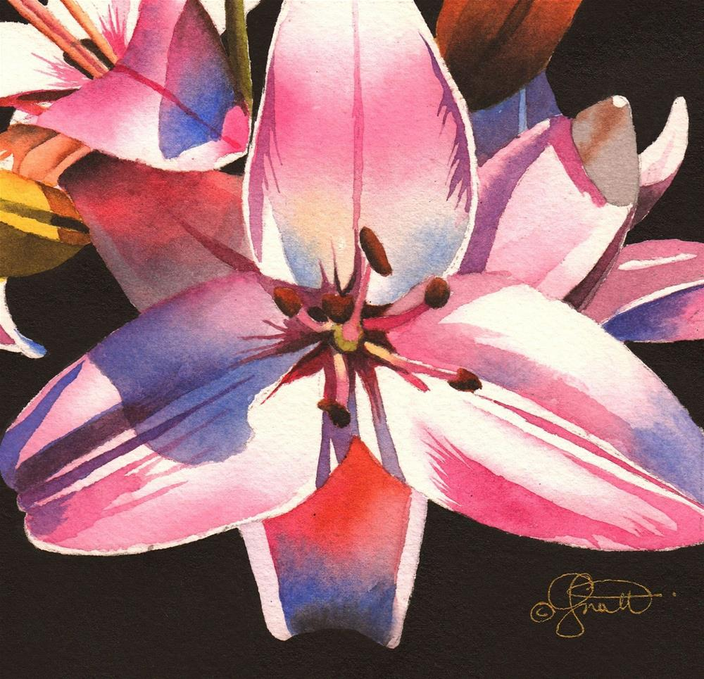 """Pink Asiatic Watercolor"" original fine art by Jacqueline Gnott, TWSA, WHS"