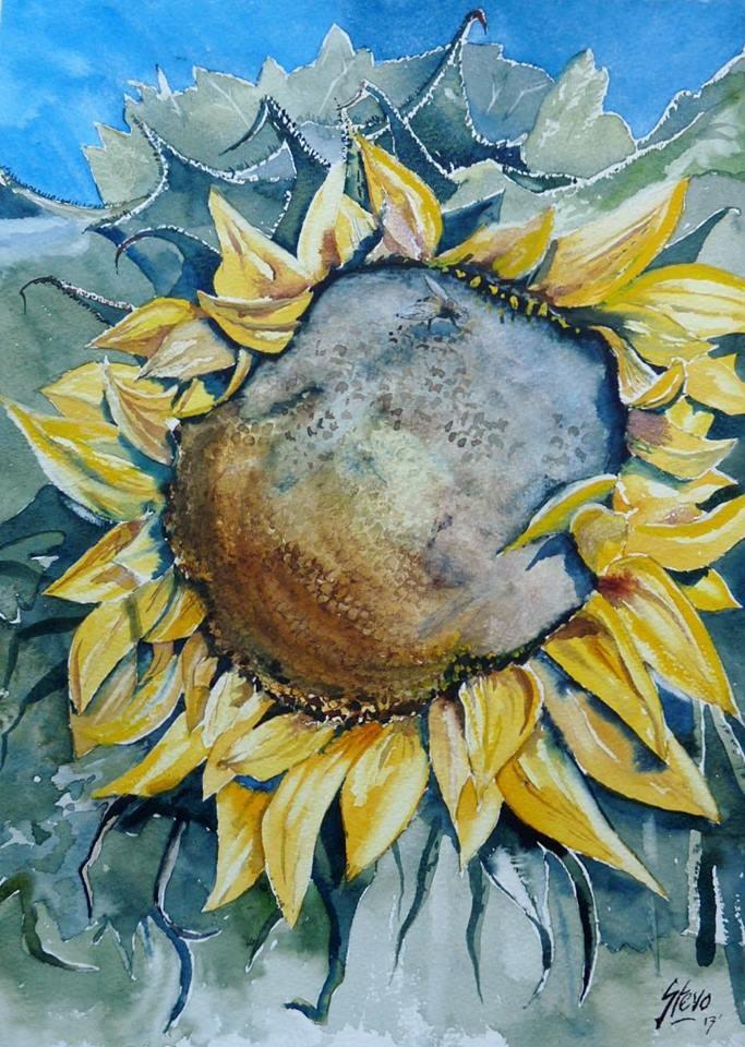 """One Lone Sunflower"" original fine art by Martin Stephenson"