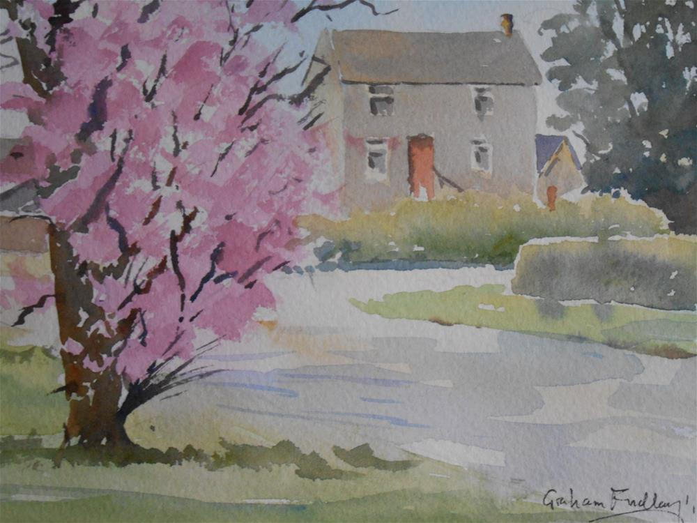 """Spring blossom"" original fine art by Graham Findlay"