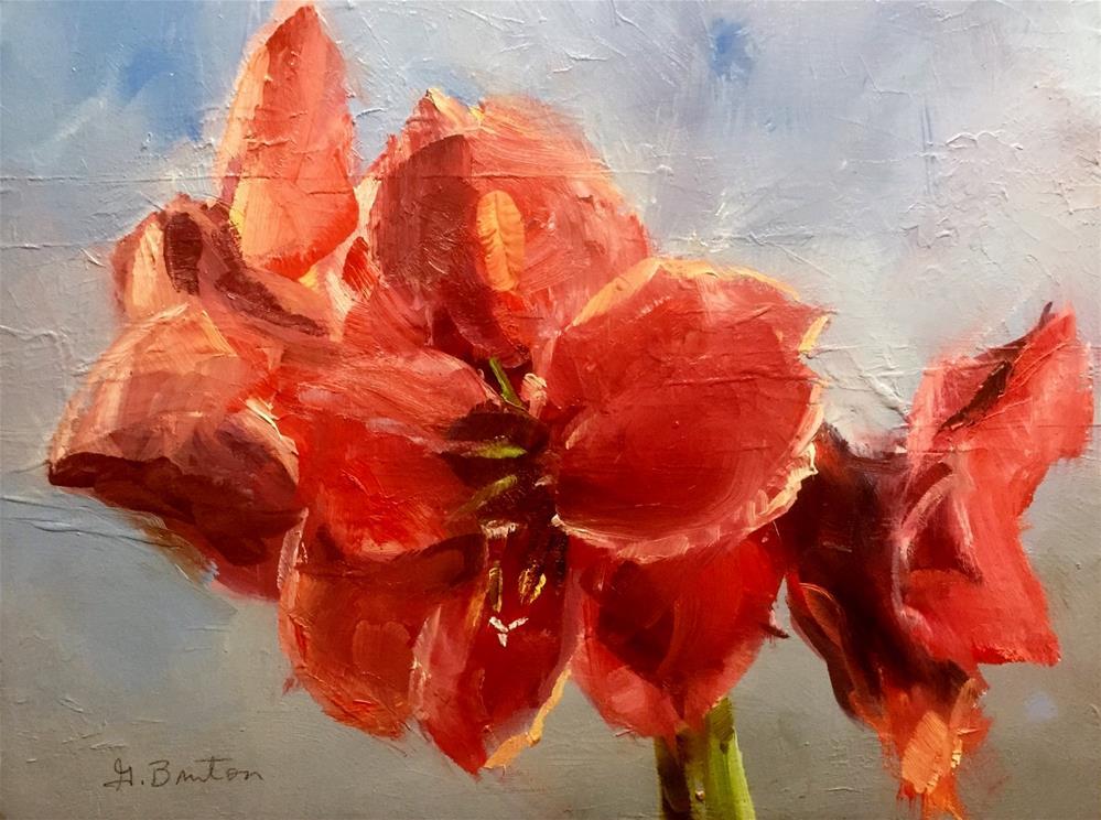 """Amaryllis Study"" original fine art by Gary Bruton"