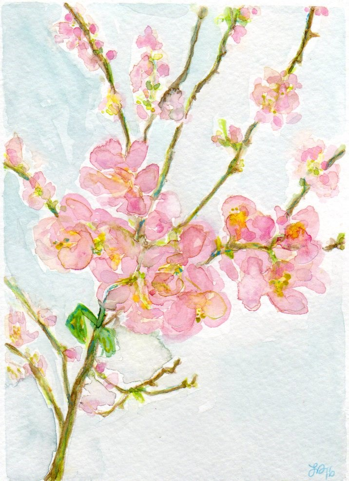 """Cherry Blossoms"" original fine art by Laura Denning"