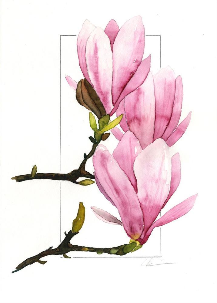 """Three Magnolias"" original fine art by Clair Hartmann"