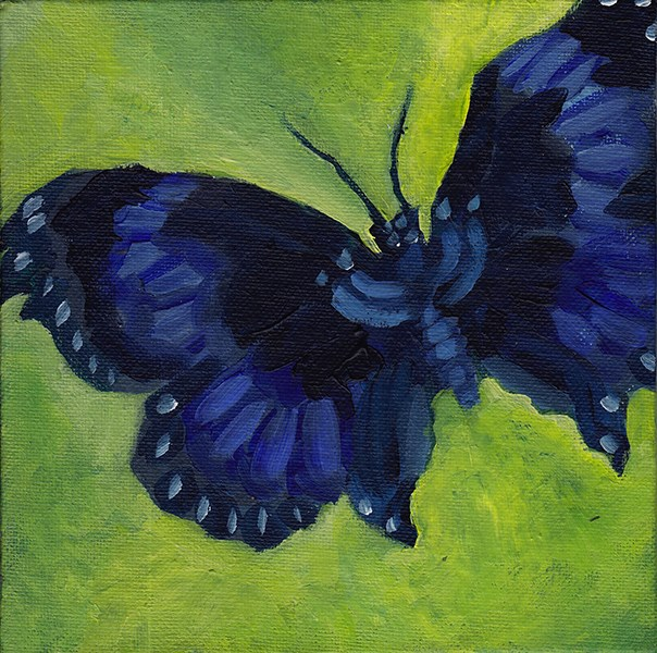 """Butterfly"" original fine art by J M Needham"