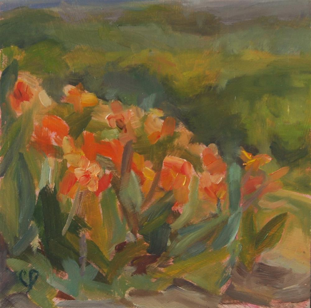 """Plein air Canna Sutdy - Day 7- 30 in 30"" original fine art by Carol DeMumbrum"