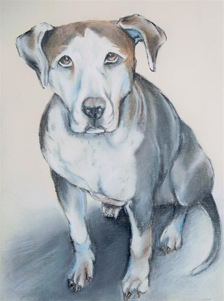 """Dog Sketch 11"" original fine art by Daryl West"