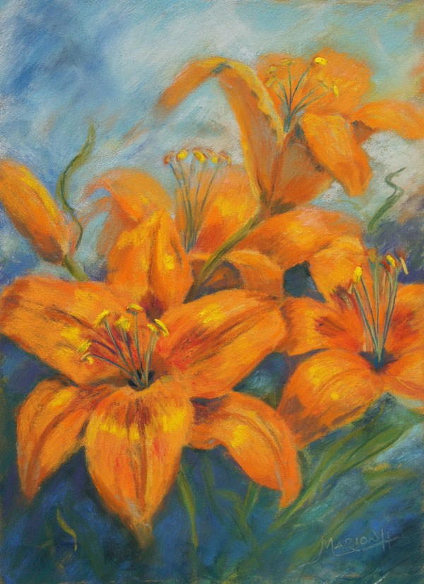 """Orange Asian Lily in pastel"" original fine art by Marion Hedger"