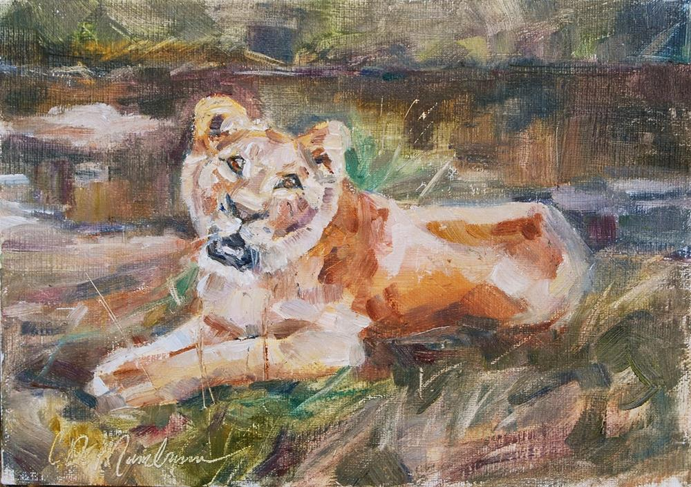 """Lioness Study"" original fine art by Carol DeMumbrum"