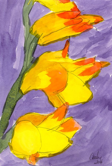 """Garden Glads"" original fine art by Donna Crosby"