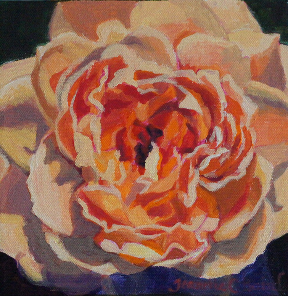 """Orange Garden Rose"" original fine art by Jeanette Baird"