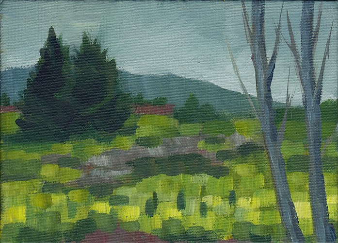 """Green Grass, Grey Sky"" original fine art by J M Needham"