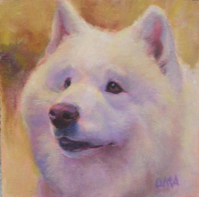 """Samoyed"" original fine art by Debra Ames"