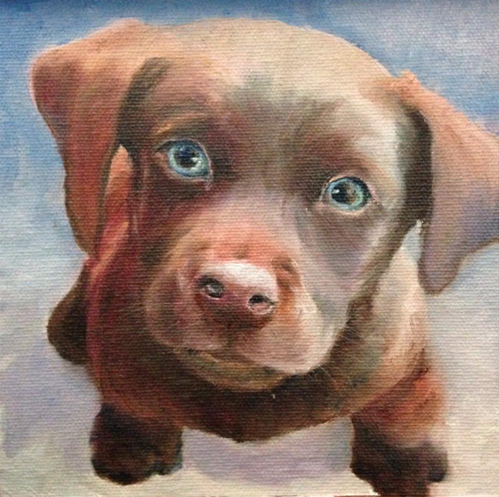 """""""Puppy Dog Eyes"""" original fine art by Judith McKenna"""