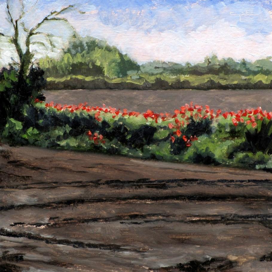 """""""Linde de amapolas"""" original fine art by Eduardo Carpintero"""