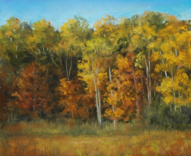 """Autumn Mixed Hardwoods"" original fine art by Susan Klabak"