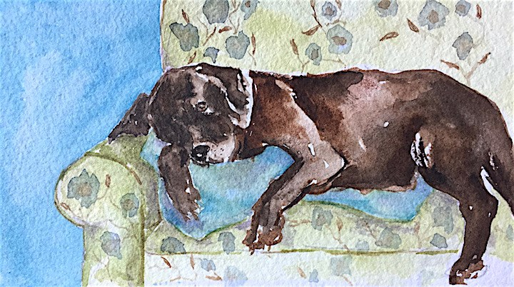 """Couch Potato, tiny sketch"" original fine art by Judith Freeman Clark"