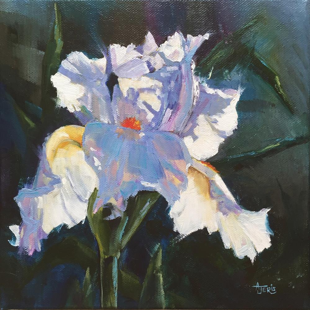 """White Iris"" original fine art by Andrea Jeris"