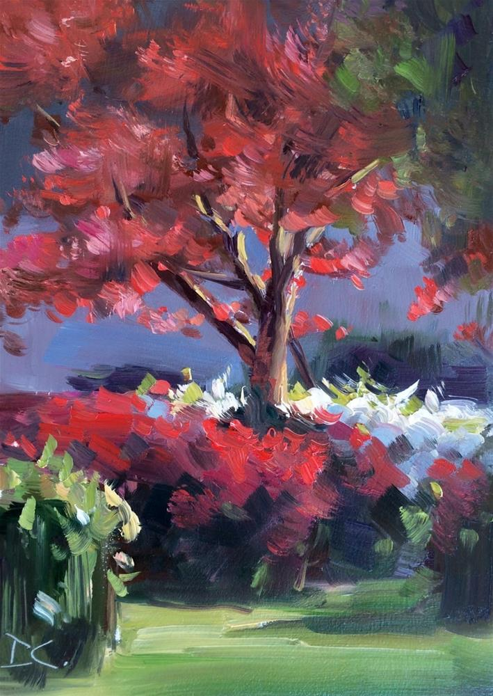 """ AZALEAS & MAPLES "" original fine art by Doug Carter"