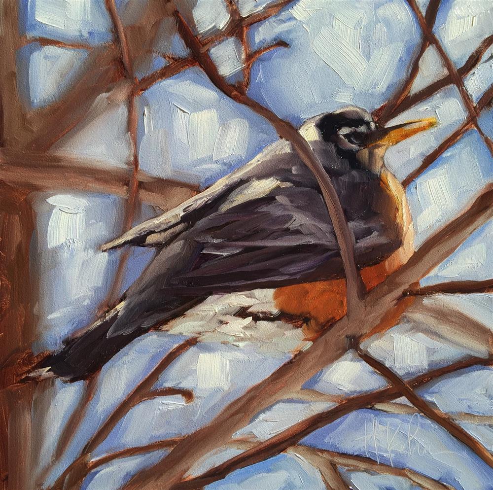 """Resting Robin"" original fine art by Hallie Kohn"