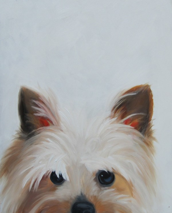 """New Yorkie"" original fine art by Amy Hillenbrand"