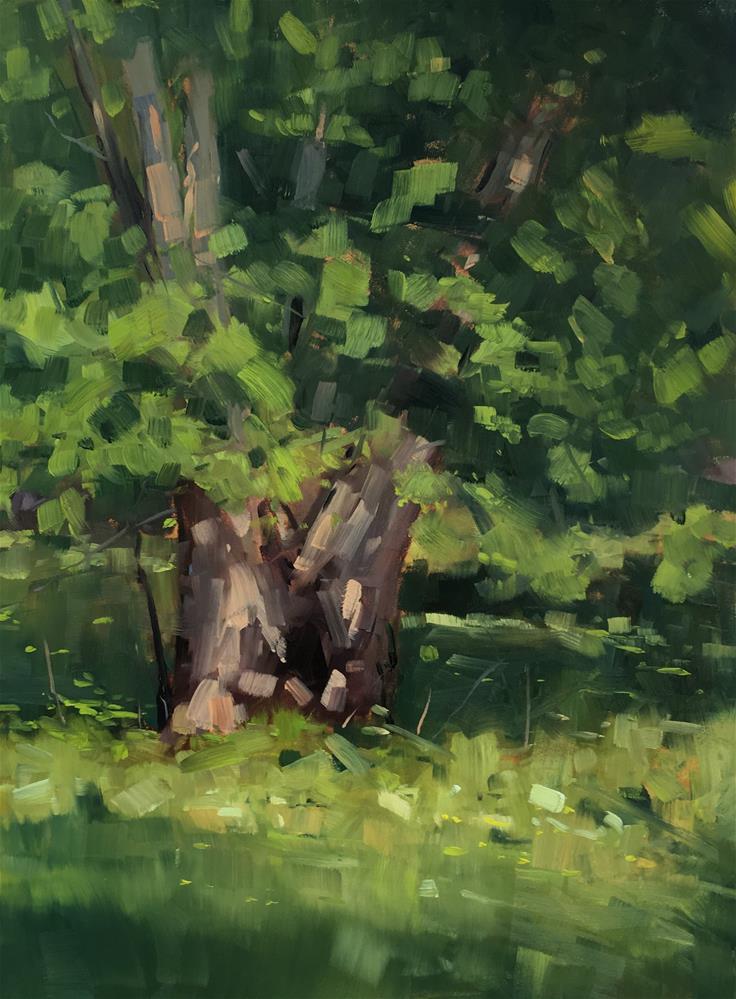 """#334 Old Cottonwood"" original fine art by Patty Voje"