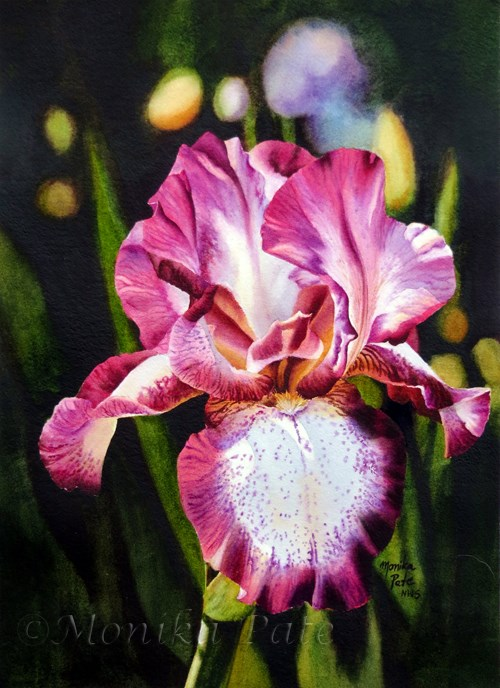 """Iris"" original fine art by Monika Pate"