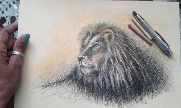 """Lion"" original fine art by Camille Morgan"