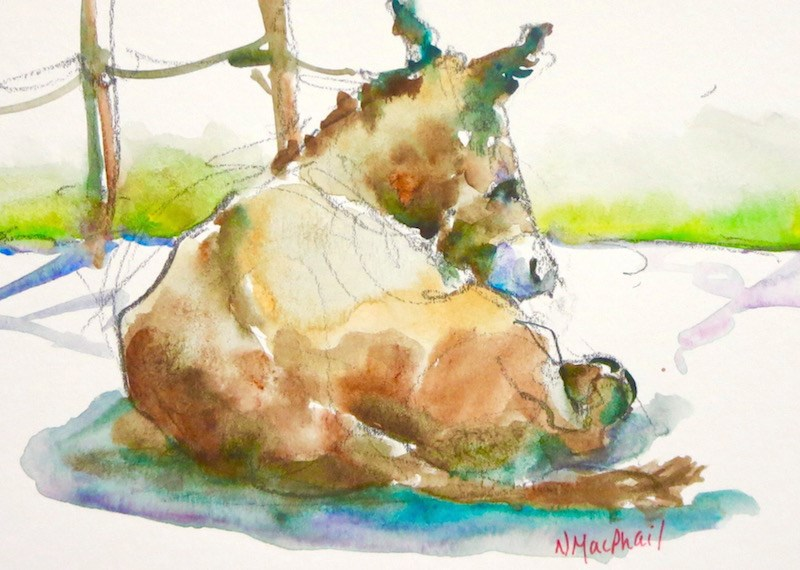 """""""peace and quiet"""" original fine art by Nora MacPhail"""