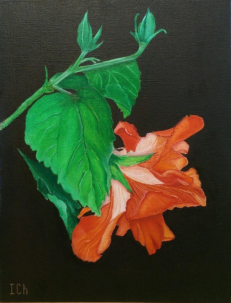 """Flower Hibiscus"" original fine art by Irina Chekhovtsova"