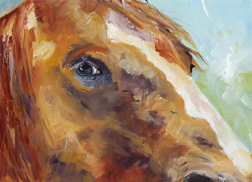 """EYE OF THE HORSE ORIGINAL OIL ON TEXTURED PANEL © SAUNDRA LANE GALLOWAY"" original fine art by Saundra Lane Galloway"