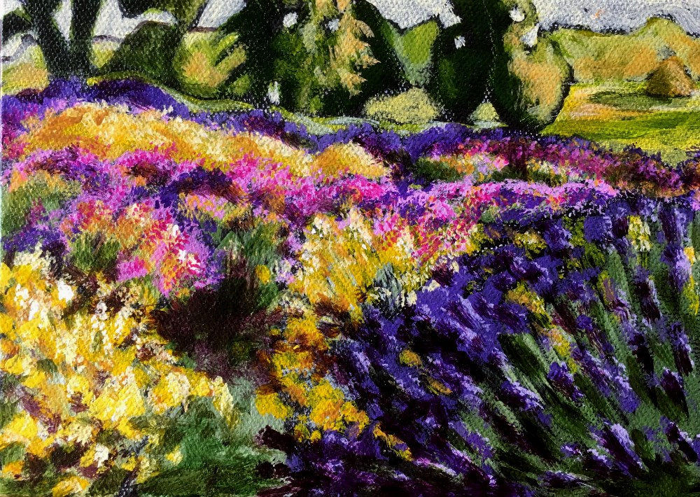 """Lavender field"" original fine art by Colleen OHair"