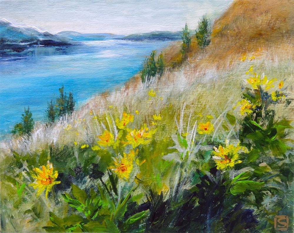 """6036 - Arrowleaf Daisies"" original fine art by Sea Dean"