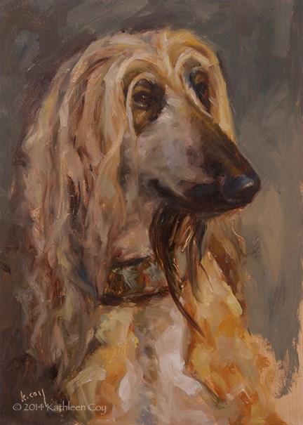 """Day 26 - Afghan Hound"" original fine art by Kathleen Coy"