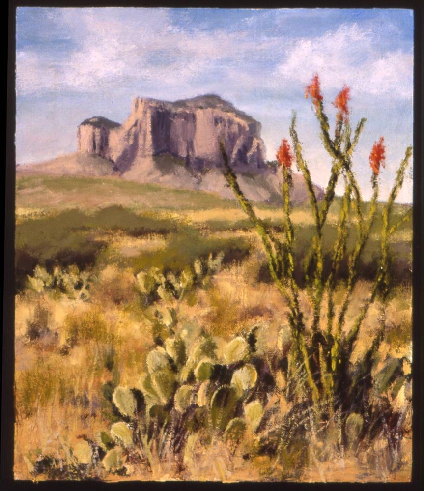 """Big Bend Afternoon"" original fine art by Janet Broussard"