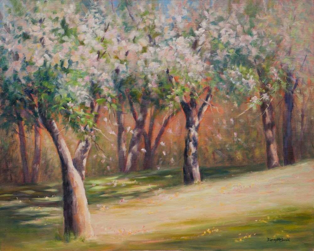 """Apple Blossoms as a Painting/Sketch"" original fine art by Debbie Lamey-Macdonald"
