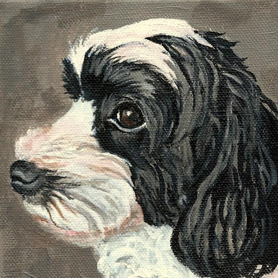 """Pepper"" original fine art by Lisa Wiertel"