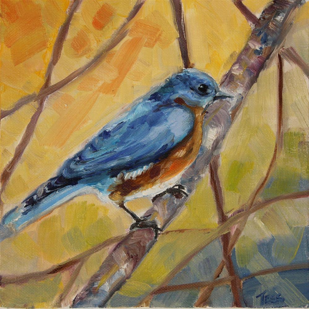 """Blue Bird-Buffalo Springfield"" original fine art by Tess Lehman"