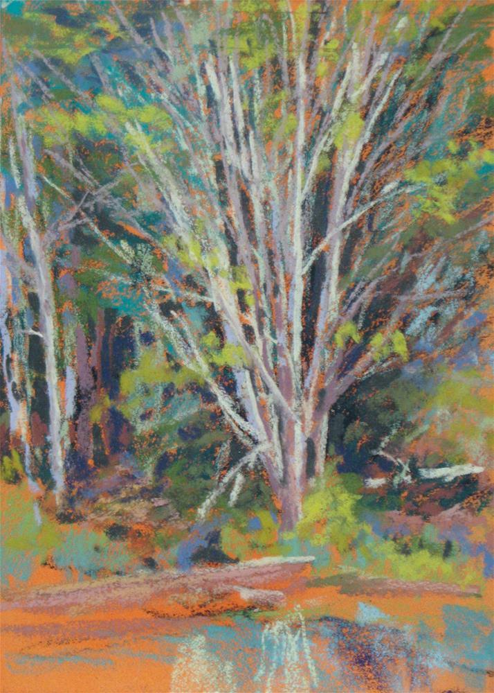 """River Birch Fashion"" original fine art by Marsha Savage"