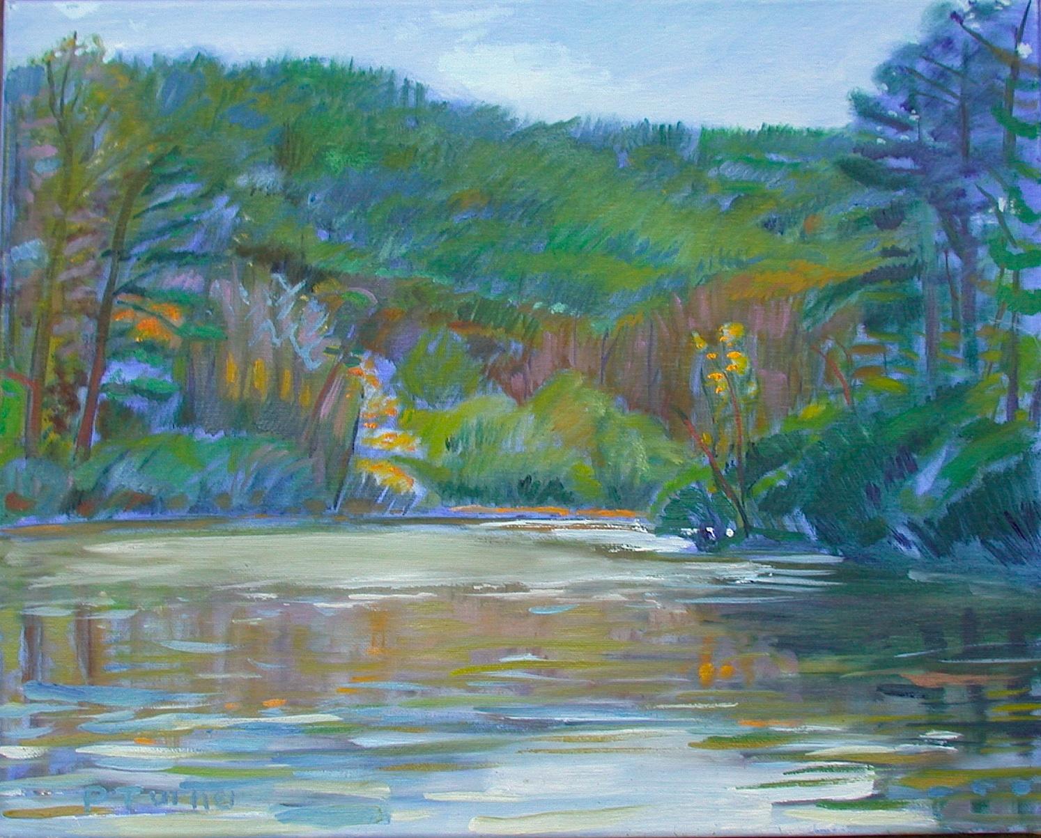 """Pond at Miller School"" original fine art by Polly Turner"