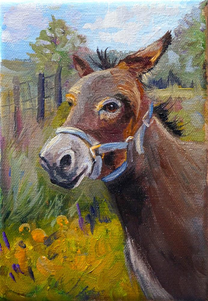 """Daisy the Donkey"" original fine art by Linda Dunbar"