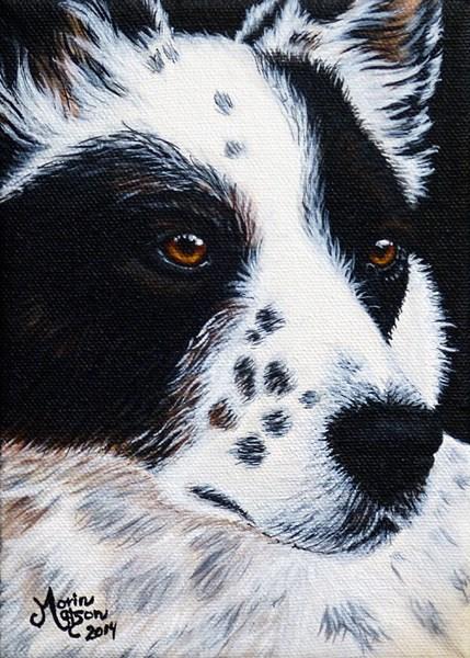 """Herding Dog"" original fine art by Monique Morin Matson"