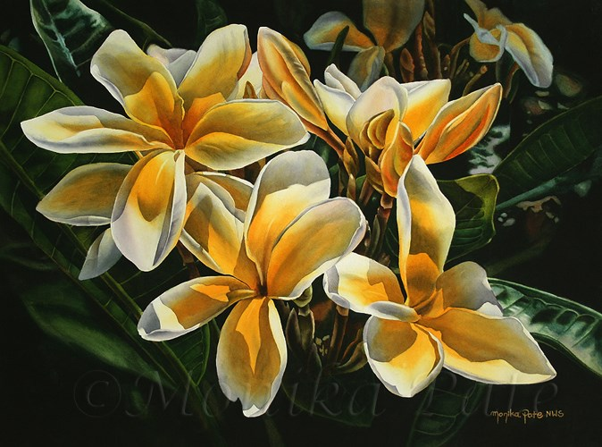 """Sunny Plumerias"" original fine art by Monika Pate"