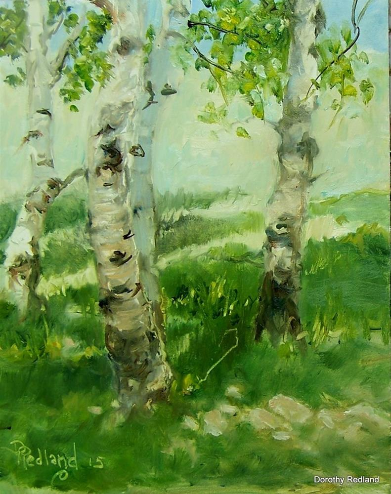 """ The shade of the Aspen"" original fine art by Dorothy Redland"