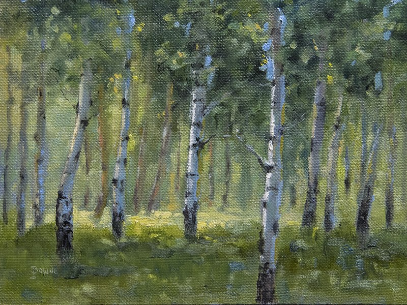 """Aspen Glen"" original fine art by Bonnie Bowne"