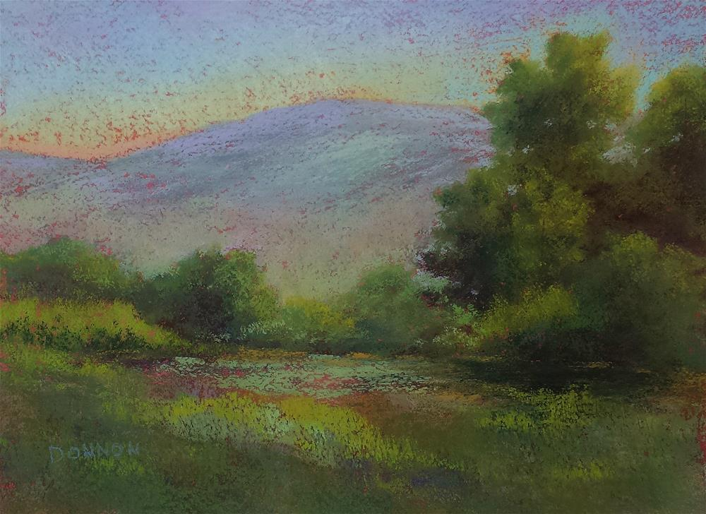 """""""Quiet Meadow 9x12 Pastel Art on Watercolor Paper with clear gesso and acrylic underpainting"""" original fine art by Donna Donnon"""