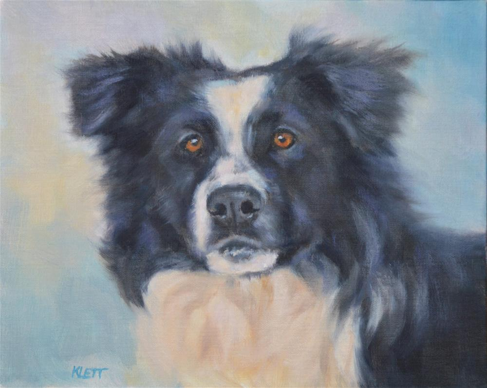 """Border Collie"" original fine art by Tracy Klett"