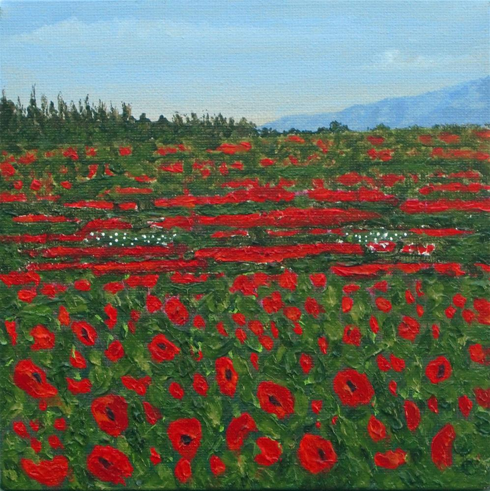 """Poppies of Ireland"" original fine art by karen richardson"