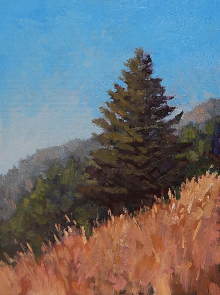 """Morning Hike"" original fine art by Lisa Kyle"